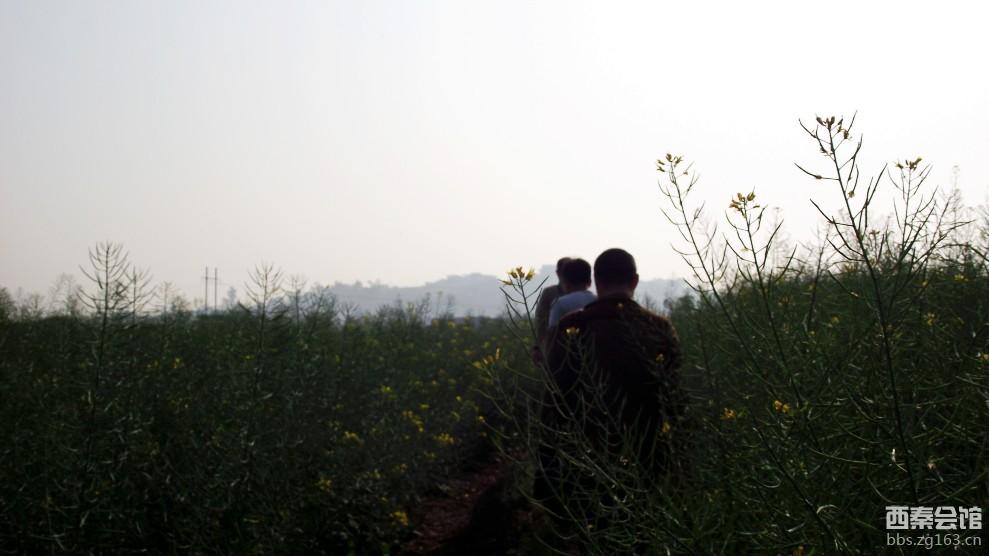 户外Ⅰ 贡井-西山植物园-西秦会馆 - 自贡在线
